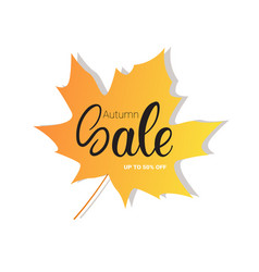 autumn sale seasonal discount banner on maple leaf vector image