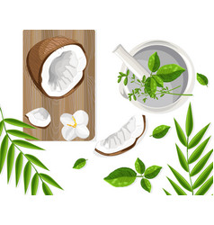 coconut and mint leaves on wooden cutting board vector image