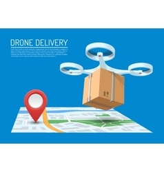 Drone delivery concept vector image