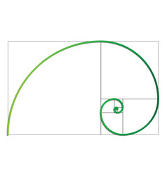 the fibonacci spiral eps 10 vector image