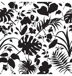 tropic silhouette pattern black vector image vector image
