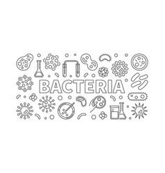 bacteria horizontal thin line vector image vector image
