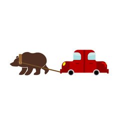 tow in russia russian bear and car traditional vector image vector image