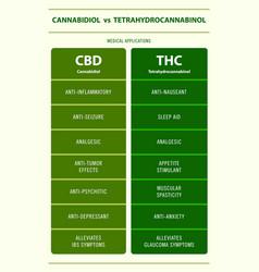 Cbd vs thc medical applications vertical vector