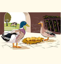 Ducks in hatching vector
