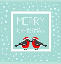 Merry christmas greeting card bullfinch winter vector