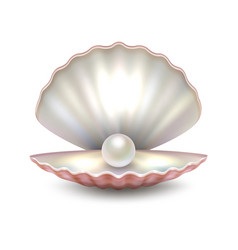 Realistic beautiful natural open sea pearl vector