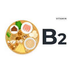 Vitamin b2 or riboflavin flat style vector