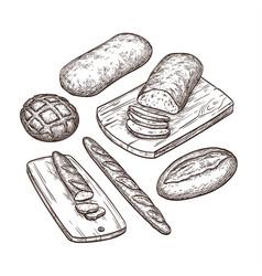 hand drawn bread set vector image