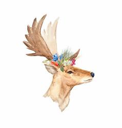 watercolor deer portrait vector image
