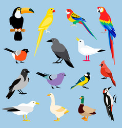 Bird icon collection vector