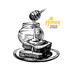 Hand drawn sketch honey background vintage vector