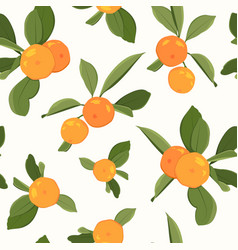 seamless pattern with orange mandarin vector image