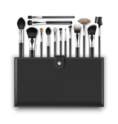 Set of Makeup Powder Blush Brow Brushes and Case vector