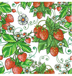strawberry with flowers vector image