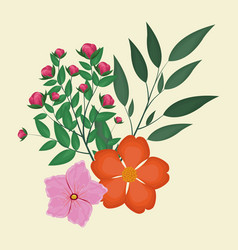 nasturtium and geranium leaves natural decoration vector image