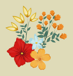 flowers ornament floral decoraiton vector image
