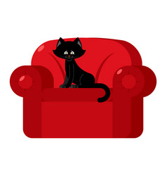 black cat on red armchair home pet on chair vector image