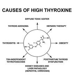 Causes high thyroxine thyroid hormone vector