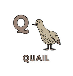 Cute cartoon animals alphabet quail vector