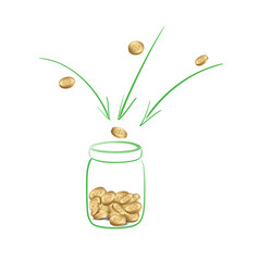 Fundraising or donation - collect money vector