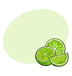 Half and quarter of ripe unpeeled lime hand drawn vector