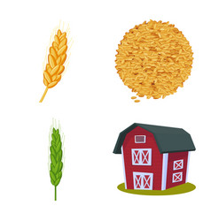Isolated object wheat and corn sign set of vector
