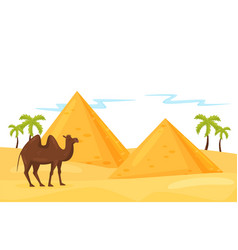 landscape of desert with egyptian pyramids palm vector image