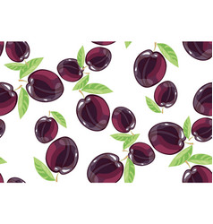 Plum fruits sketch drawing seamless pattern vector