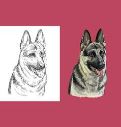 portrait cute funny dog german vector image