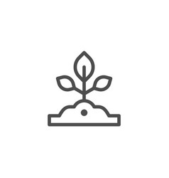 sapling line icon vector image