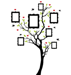 family tree with picture frames vector image vector image