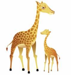 giraffe family vector image vector image