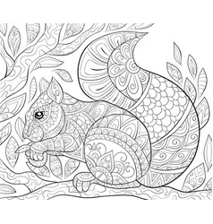 Adult coloring bookpage a cute squirrel on the vector