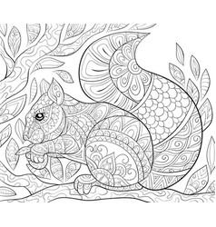 Adult coloring bookpage a cute squirrel vector