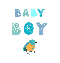 Bird and hand drawn lettering - baby boy vector
