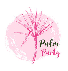 coconut palm or queen palmae with leaves poster vector image