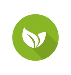 Eco icon with green leaf vector