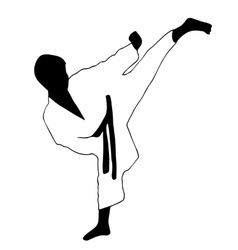Karate boy Sport vector