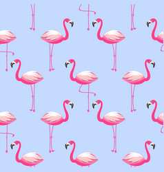 Seamless pattern with flamingo exotic bird vector