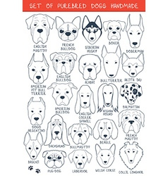 Set of 24 dogs different breeds handmade Head dog vector
