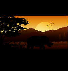 silhouette of rhinos at savanah vector image