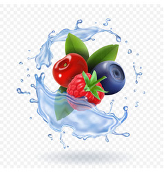 Splash of fresh mixed forest berries realistic vector
