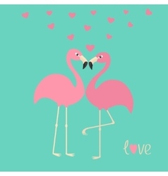 Pink flamingo couple and hearts Exotic tropical vector image