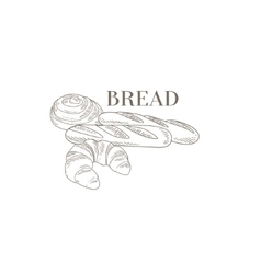 Baguette Croissant and Swirl Hand Drawn Realistic vector image