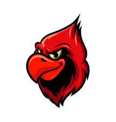 Cardinal bird cartoon mascot design vector