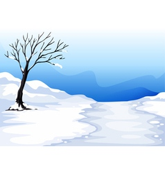 landcape with ice vector image vector image