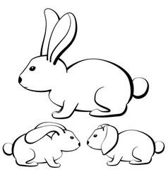 rabbits-1 vector image