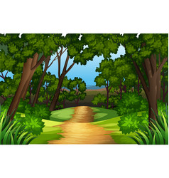 a nature road landscape vector image