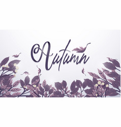 autumn leaves background in purple toned freehand vector image